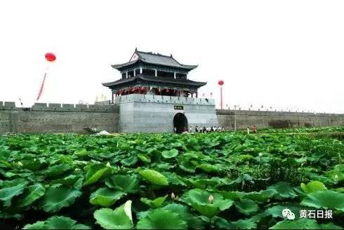 仙桃市沔城风景名胜区基础设施建设项目; 仙桃市沔阳特色产业配套