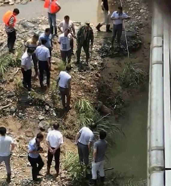 江西三救灾失联干部中一人确认遇难 系大学生村官