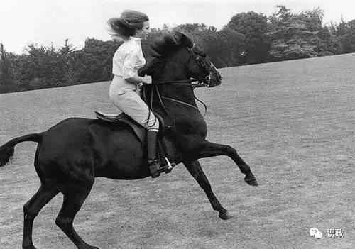 见过王岐山的英国公主 12年后与蔡奇谈了同一件事