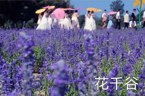 水上乐园免费玩、万斤西瓜随心吃、景点任性逛精彩尽在西九华山清凉消暑月