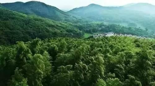 西九华山心灵休憩的乐园