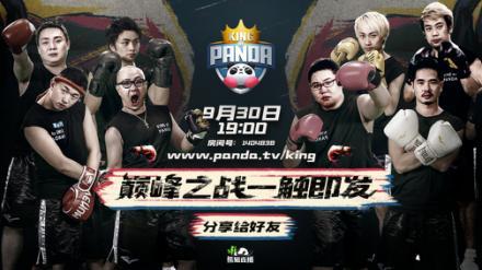 《King of Panda》燃情来袭 全新概念拳击真人