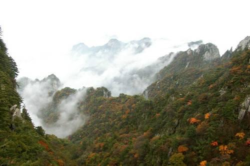 枫叶连绵 彩霞满天 尧山景区邀你开启一段惬意悠然的旅行