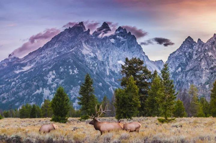 59个美国国家公园 我们帮你选出了最值得去的10个