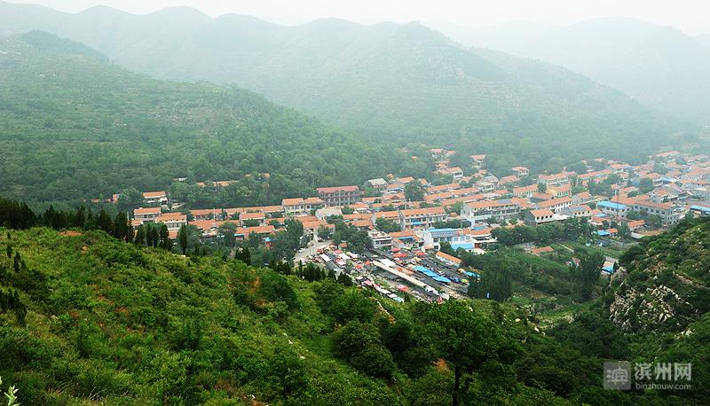 """今年,山东启动实施了森林城市国家,省,乡镇,村居""""四级联创""""活动,力争"""