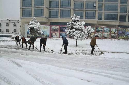 天瑞旅游集团积极组织员工除雪确保道路畅通