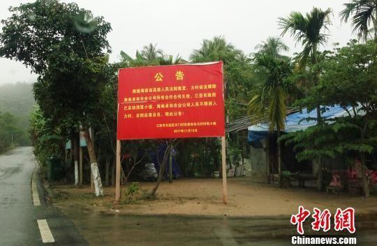 力村村口竖立的公告牌。 尹海明摄