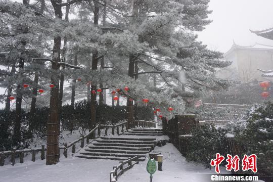 山上迎新春悬挂的红灯笼在皑皑雪中格外醒目。 黄山风景区供图摄