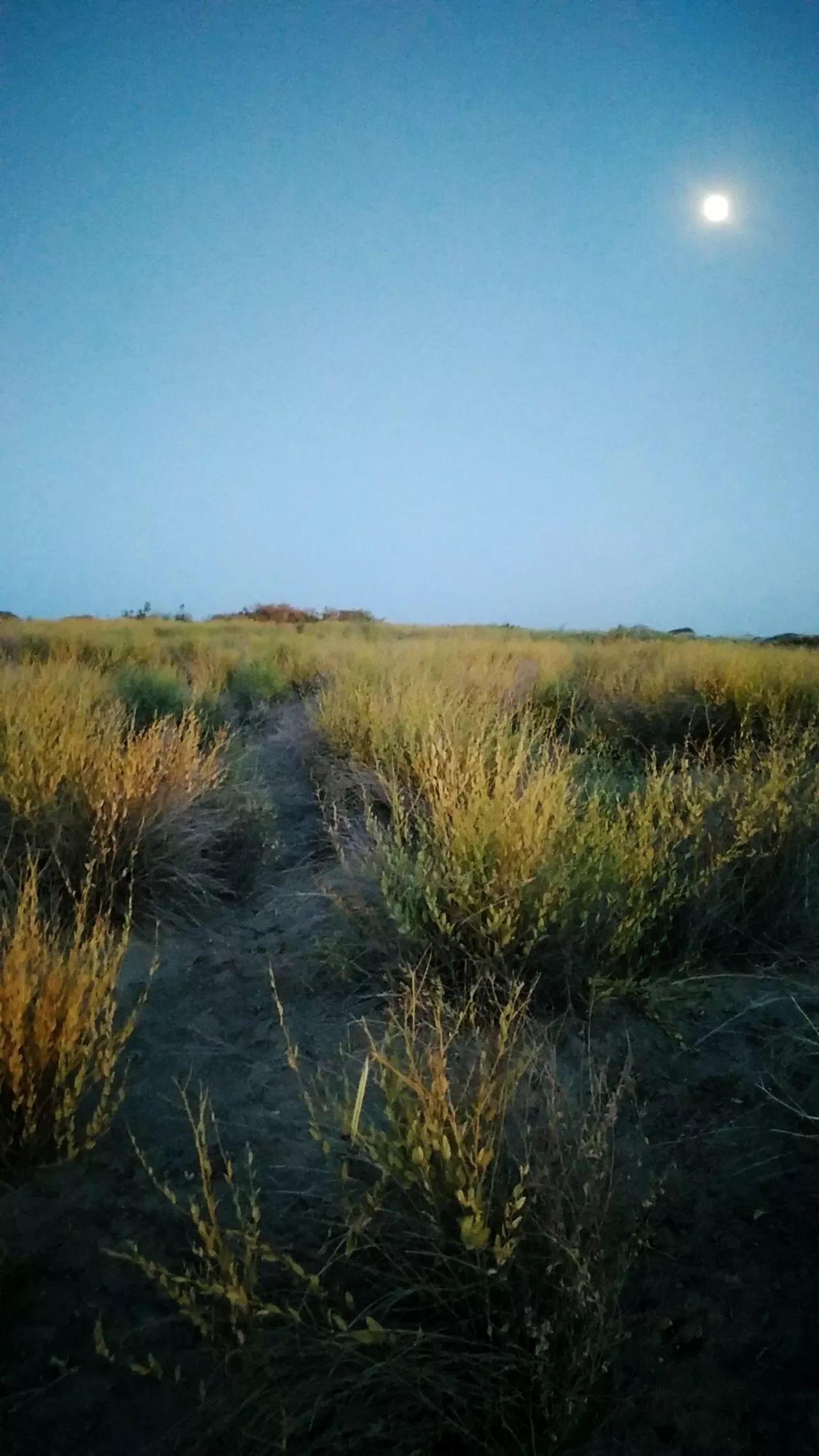 【跑者说】追星人朱进:5天400公里,还没达到极限