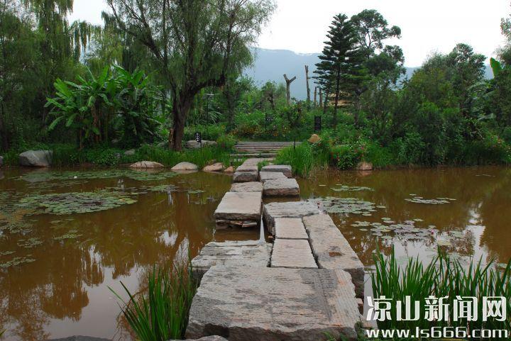 邛海湿地的建成,为西昌城市的美丽加分许多。