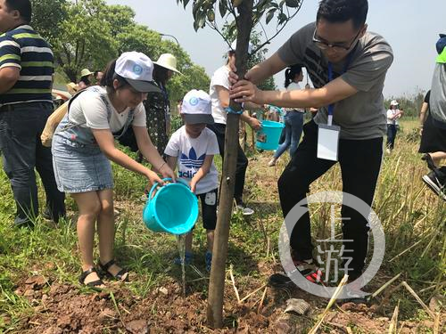 5月13日,共舞长江经济带网络媒体行的记者和志愿者在广阳岛长江边植树。.png