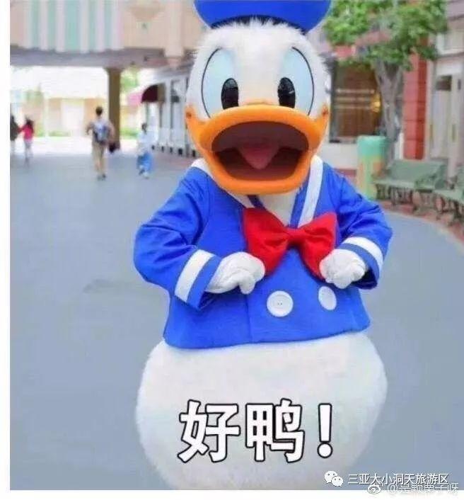 """HIGH""""泡""""七夕丨大小洞天""""免门票、免费玩、免"""