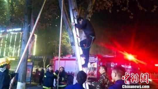 男子爬树被困,消防架梯救人张岩岩摄
