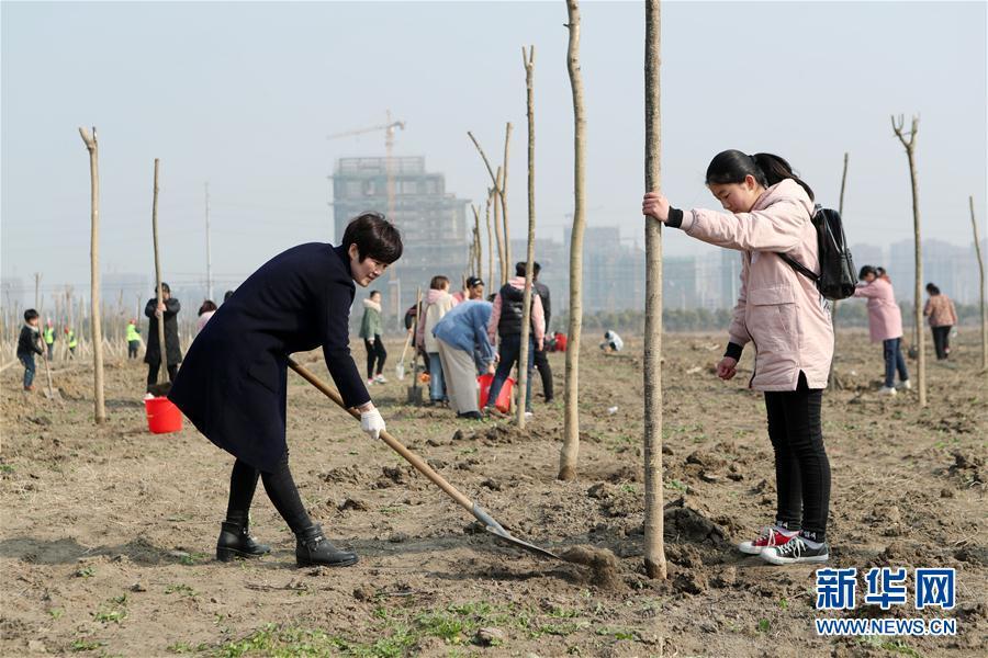 #(社会)(4)我为春日添新绿