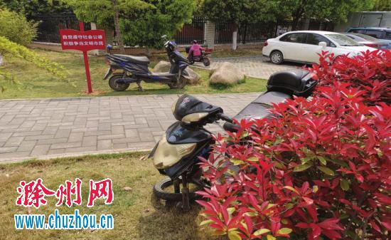 """侵占公园绿地""""僵尸车""""有碍观瞻 滁州园林局:已清理"""