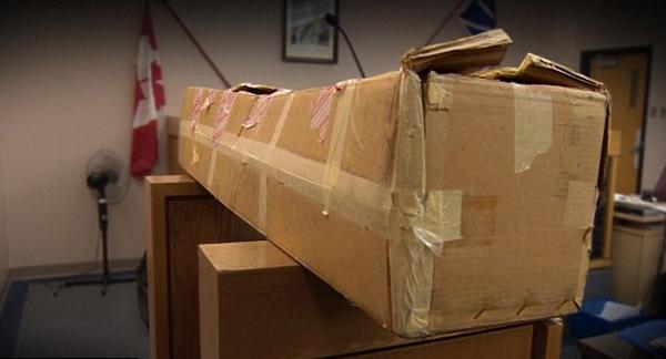 老外日本网购儿童性爱娃娃:或面临7年监禁