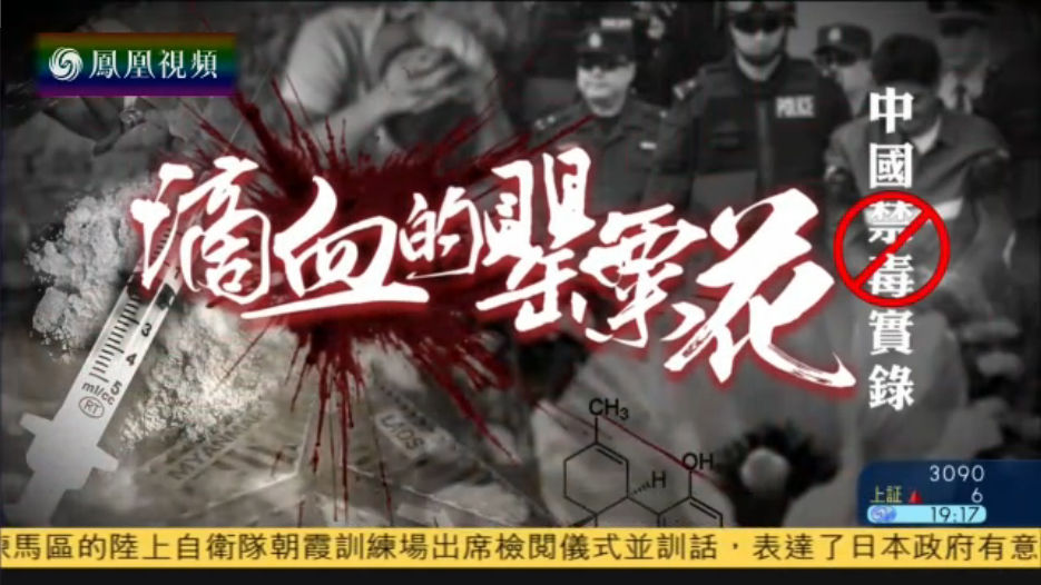 滴血的罂粟花——中国禁毒实录