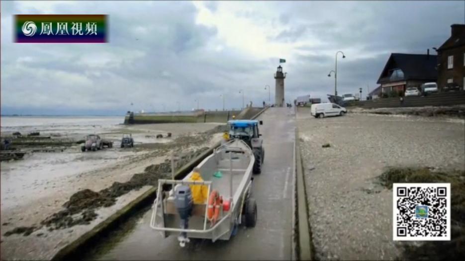 法国康卡勒小镇的生蚝养殖产业