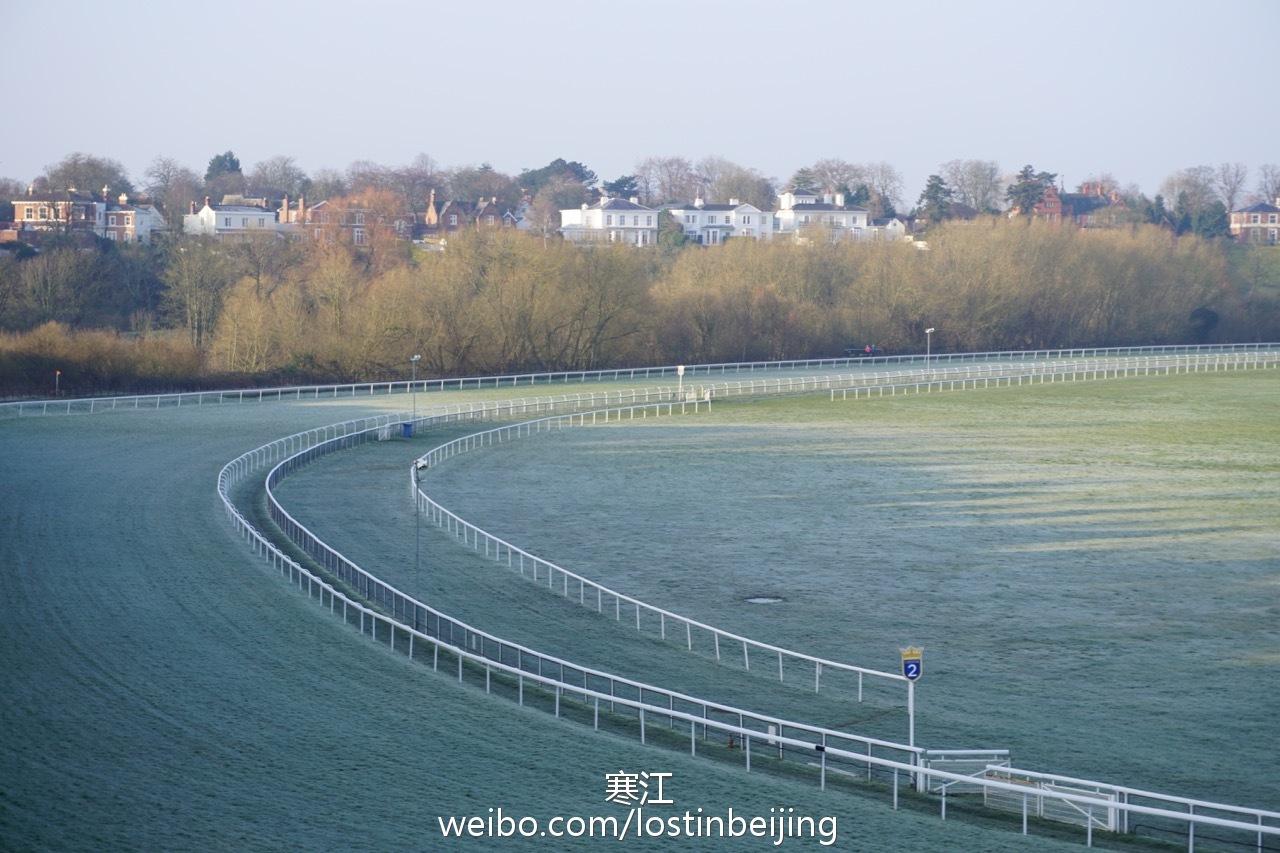 赛马场的草坪也是绿中透白,这是自古罗马时期就有的赛马场.-这个