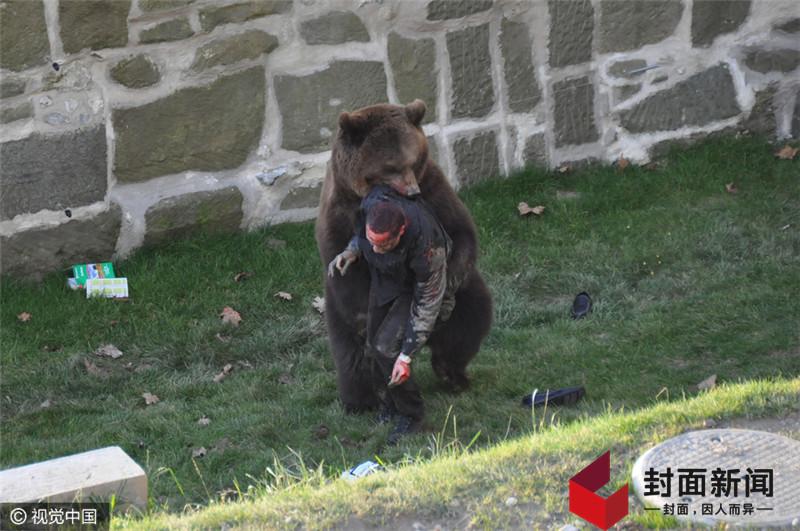 浙江动物园老虎咬人 盘点全球动物伤人事件