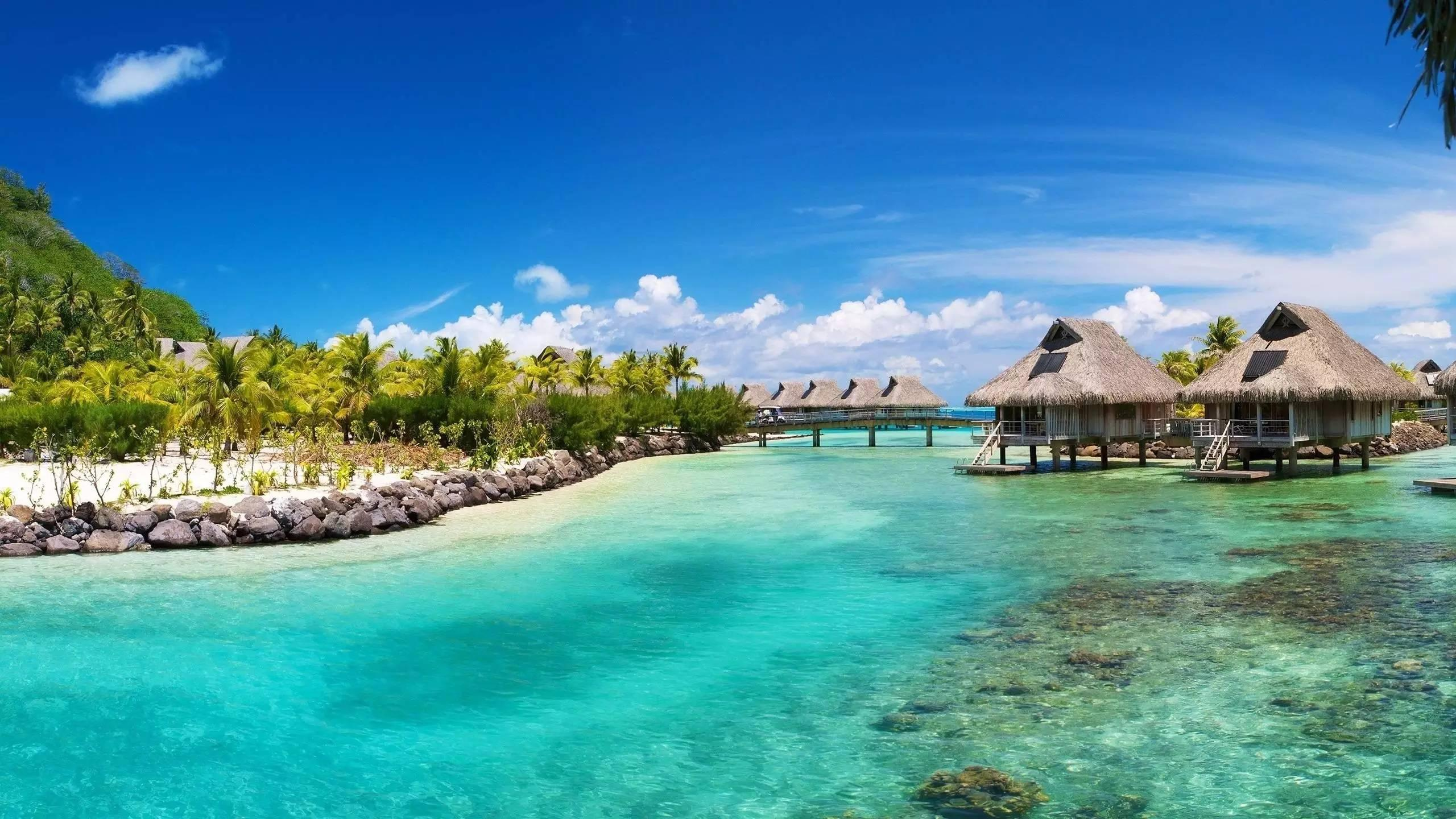 每年12月16日 次年4月15日是巴巴多斯的最凉爽的季节,而这一段时间图片