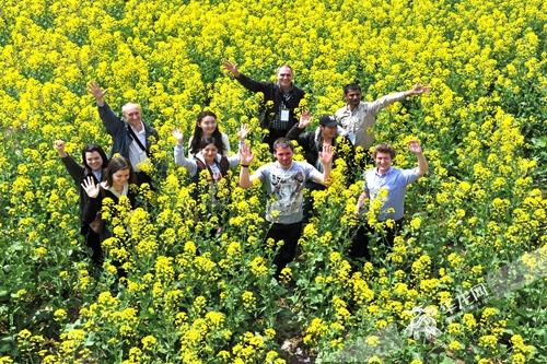 菜花节——来自美国、加拿大的国际友人来潼赏花 景区供图.jpg
