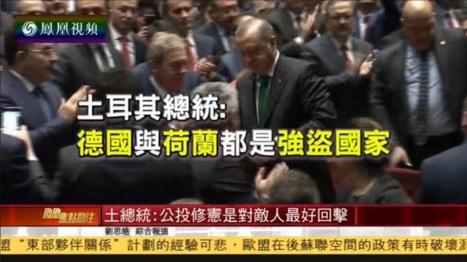 土耳其总统:德国与荷兰都是强盗国家 对欧盟无益