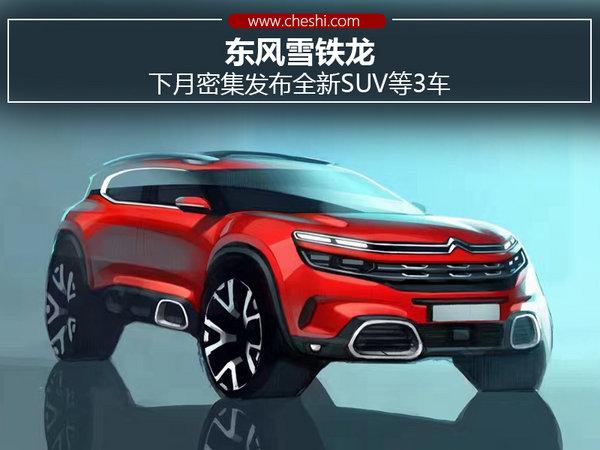 东风雪铁龙 下月密集发布全新SUV等3款车-图1