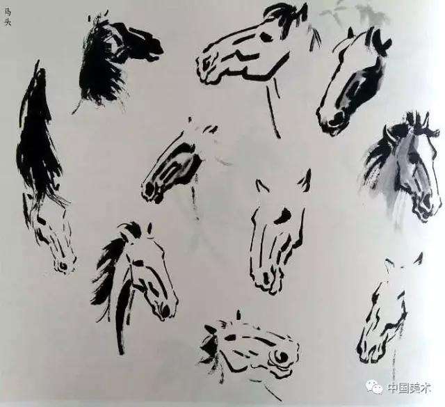 在所有的动物中,马是身材高大而身体各部分又都配合的最匀称,最优美的