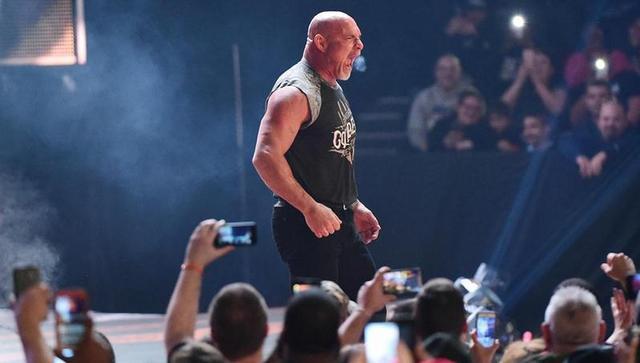 2017年WWE最经典一幕,送葬者高柏布洛克,王者间的对视