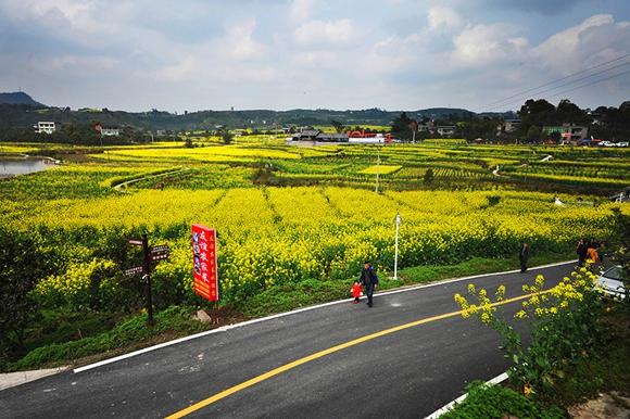 对村子公路加宽改革和延伸
