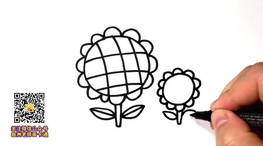 彩色向日葵简笔画图片-画一种植物,天马行空简笔画,简