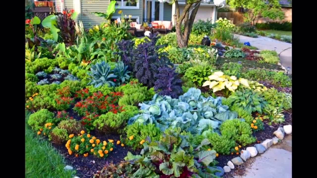 精美设计的多肉花园装饰方案