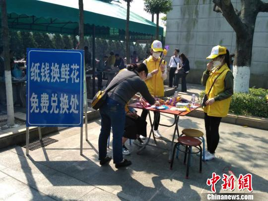 """广州各主要祭扫场所推出""""纸钱换鲜花""""服务,已送出1600束鲜花。 蔡敏婕 摄"""