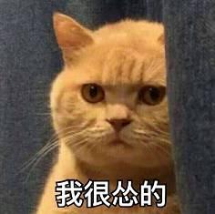 必威app手机下载版 11