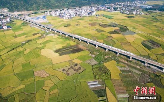 """""""高速铁路""""为什么大多修建在高架桥上?"""