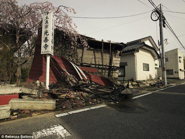 核泄漏6年后的日本福岛,空城里开满樱花 - hubao.an - hubao.an的博客
