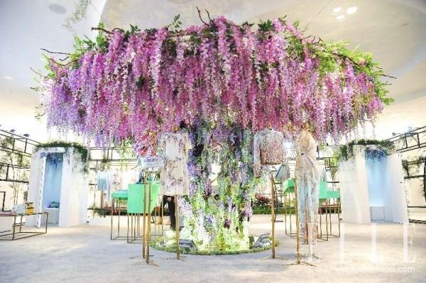 紫藤花影 邂逅上海滩的花都世界