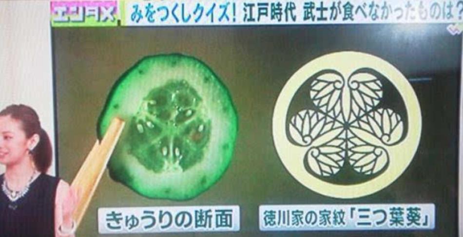 黄瓜横切面和三叶葵纹
