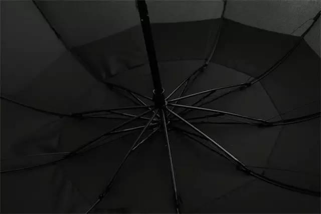 折雨伞花的步骤图解