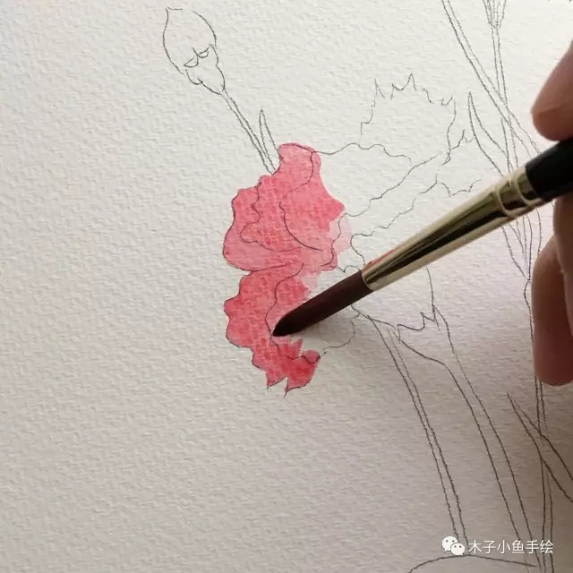 画康乃馨步骤 画一束花给母亲节
