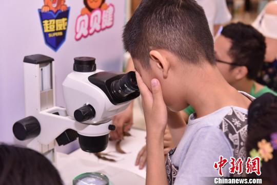 21日,有害昆虫科普展在广州开幕,图为广州小朋友在观察显微镜下的螨虫。 许青青摄
