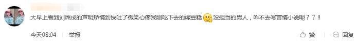 刘洲成发长文回应家暴传闻网友:咋不去写言情小说呢