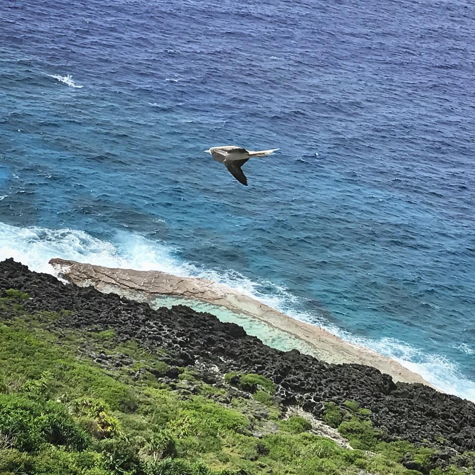 """罗塔岛被誉为""""北马里亚纳未经雕琢的宝石"""",岛上没有拥挤如潮的游客,也"""