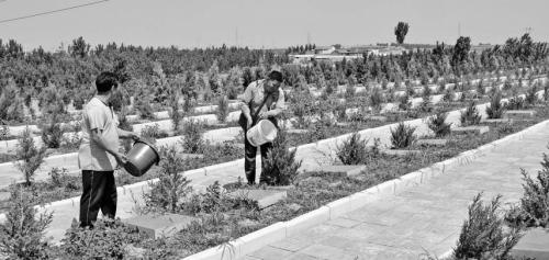 沂水县目前建成或在建公益性公墓已有62个。