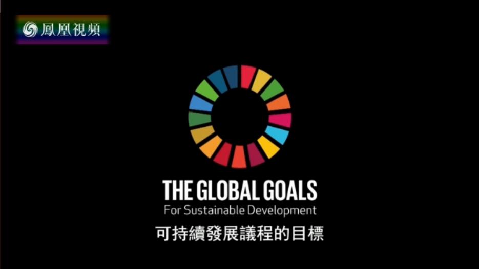 2017中国企业海外可持续发展报告——共商共建