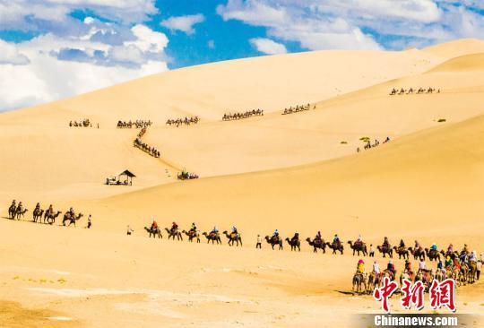 沙漠骆驼笛子简谱