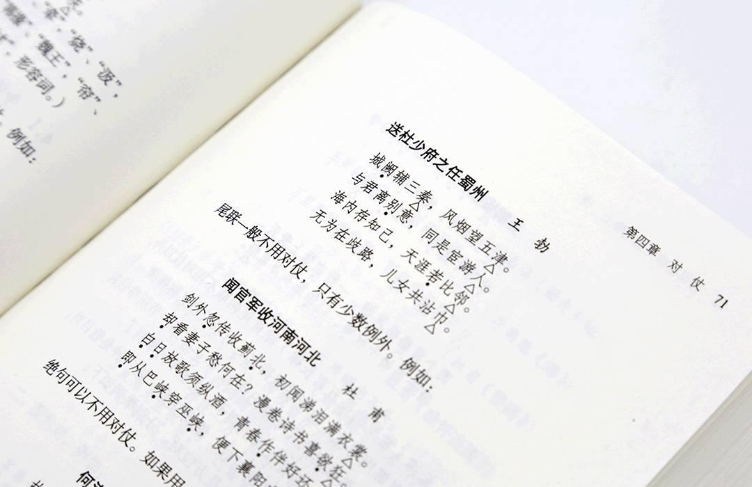 不看这套书,读遍诗词也枉然_|_意外