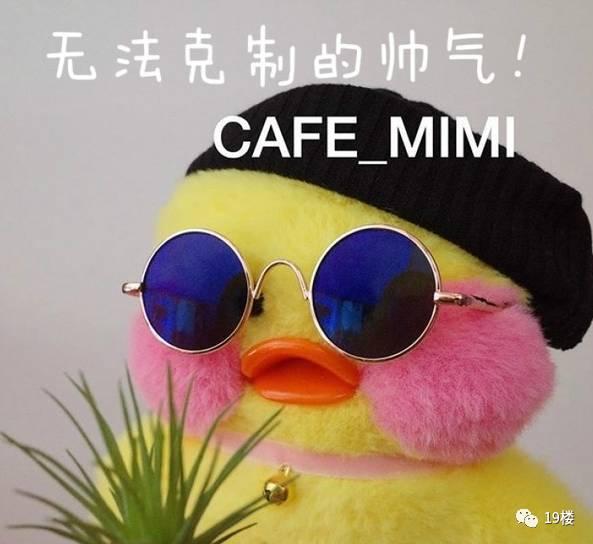新表情帝!朋友圈表情好友全换成它了.玻尿酸头像斗方言包台湾图图片