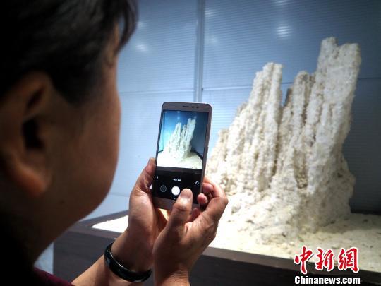 图为一名记者用手机拍摄盐花。 孙睿 摄